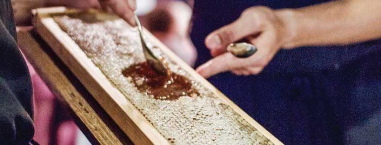 Attica Honeycomb Rack